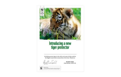 WWF Tiger Protector Certificate