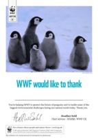 Adopt a Penguin Certificate
