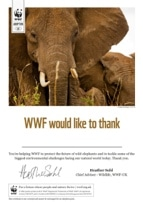 WWF Adopt an Animal Certificate