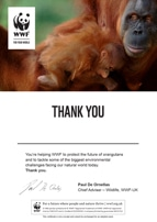 Adopt an Orangutan Certificate