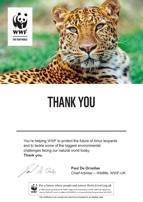 Adopt a Leopard Certificate