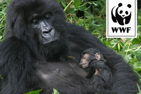 WWF Adopt a Mountain Gorilla