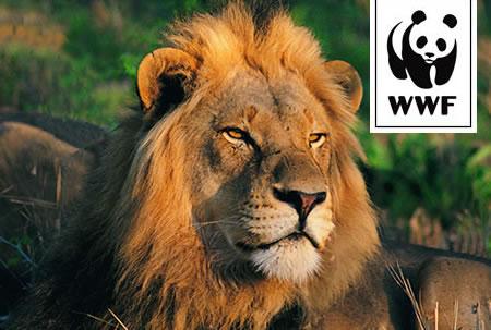 WWF Adopt a Lion